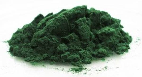 spiruline contre indication